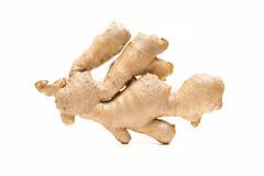 Ginger Root Isolated On White-Hintergrund Lizenzfreies Stockbild