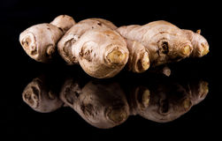 Ginger Root IV Stock Photography