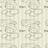 Ginger root   pattern. Ginger root seamless vector linear  pattern. Food background Stock Photography