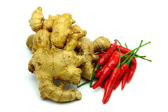 Ginger Root & Red Chili on White Background Royalty Free Stock Photography