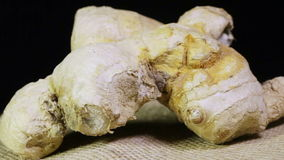 Ginger root stock video footage