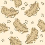 Ginger root seamless pattern. Hand drawn vector illustration.  Stock Photos