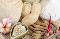 Ginger Root sfrega e l'aiuto del miele riduce l'infiammazione ed uccide i batteri o i funghi sulla pelle Pelle giovanile di resta Fotografia Stock
