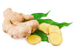 Ginger root spice Royalty Free Stock Photos