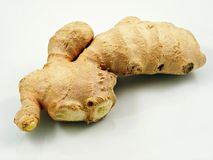 Ginger root on white background Stock Image