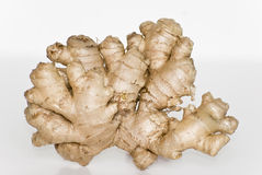 Ginger root on white Stock Photography