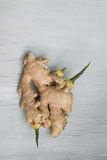 Ginger root with young green sprouts on wooden background. With place for text Stock Photography
