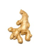 Ginger root (Zingiber officinale) Stock Photography