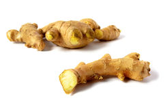 Ginger roots Royalty Free Stock Images