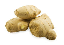 Ginger roots. On white background Stock Image