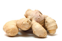 Ginger Roots Royalty Free Stock Image