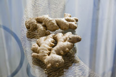 Ginger roots on glass table Royalty Free Stock Photography