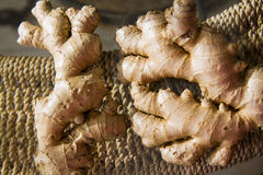 Ginger roots under contrast lightning Royalty Free Stock Images