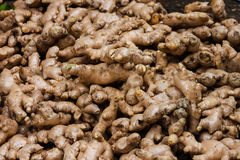 Ginger for sale in the asian market Stock Image