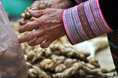 Ginger for selling in Bac Ha market, Vietnam Stock Photos