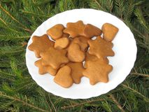 Ginger snap. Holidays ginger snaps on the dinner plate Royalty Free Stock Photo