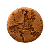 Ginger Snap Cookie Royalty-vrije Stock Foto