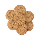 Ginger snaps Royalty Free Stock Image