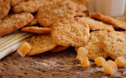 Ginger spiced cookies Royalty Free Stock Images