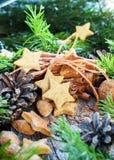 Ginger Stars Christmas Cookies Royalty-vrije Stock Foto