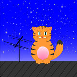 Ginger Tabby Cat Sits On A Roof On A Background Of The Sky Stock Photo