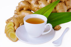 Ginger Tea Stockbilder
