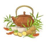Ginger tea illustration Stock Images