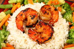 Ginger Teriyaki Shrimp with Rice and Veggies Royalty Free Stock Photo