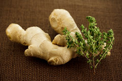 Ginger and thyme Royalty Free Stock Image