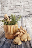Ginger, turmeric and herbs Royalty Free Stock Image