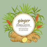 Ginger vector frame Stock Images