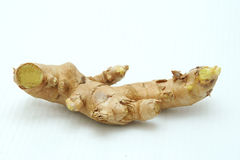Ginger. On white background Stock Images