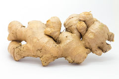 Ginger on white background. Fresh raw herb background Royalty Free Stock Photography