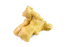 Ginger on white background Royalty Free Stock Photography