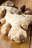 Ginger on wood. Shallow depth of field Stock Photo
