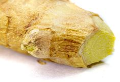 Ginger zingiber officinale is a flowering plant whose rhizome root is widely royalty free stock photos