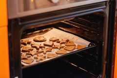 gingerbread печений домодельный Стоковые Фотографии RF
