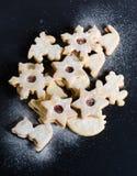 gingerbread печений рождества сделал помадки дворца Стоковые Изображения RF