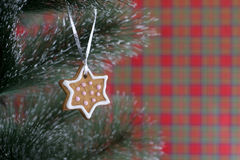 Gingerbread рождества на рождественской елке Стоковые Фото