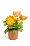 gingerbread цветка пасхи птиц стоковая фотография
