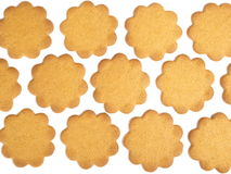 Gingerbread. Many rows of gingerbread on a white background Royalty Free Stock Photos