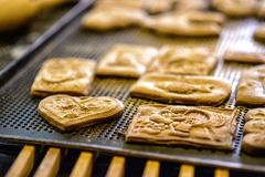 Gingerbread bakery in Torun. Poland royalty free stock images