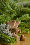 Gingerbread bear Royalty Free Stock Photos