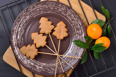Gingerbread and a branch with two ripe tangerines Royalty Free Stock Photo