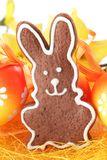 Gingerbread bunny. Close-up of gingerbread bunny and Easter eggs stock images