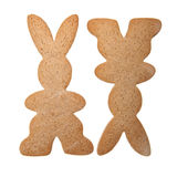 Gingerbread  bunnys isolated Royalty Free Stock Photography
