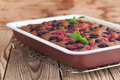 Gingerbread cake with mulberries and red currants. Shallow dof stock photography