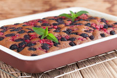 Gingerbread cake with mulberries and red currants. Shallow dof Royalty Free Stock Photo