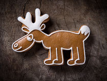 Gingerbread cariboo Stock Images