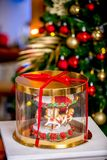 Gingerbread carousel in a gift box in front of defocused lights of Chrismtas decorated fir tree. Holiday sweets. New Year and Chri royalty free stock photography